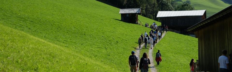Gruppe wandernd in Alpbach